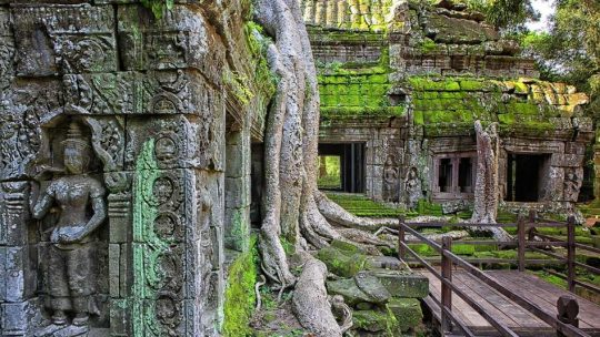 Temple d'Angkor : Une destination de rêve
